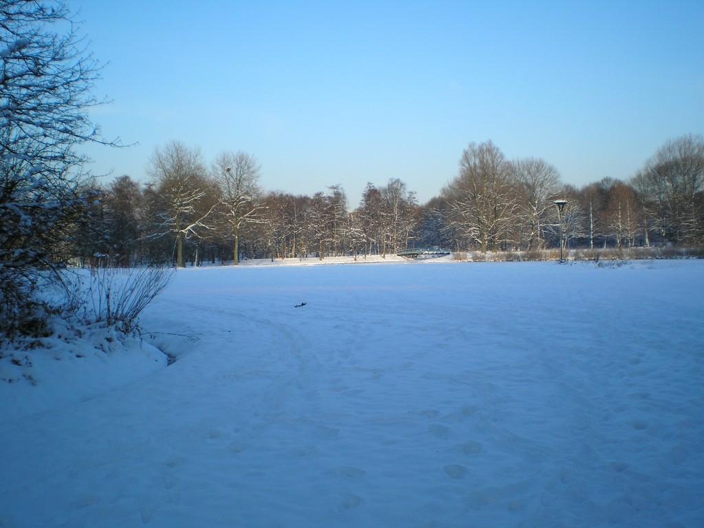 Rembrandtpark winter 2017